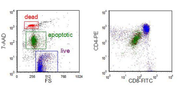 Chapter 9: Cell Death, Including Apoptosis | Flow Cytometry - A ...
